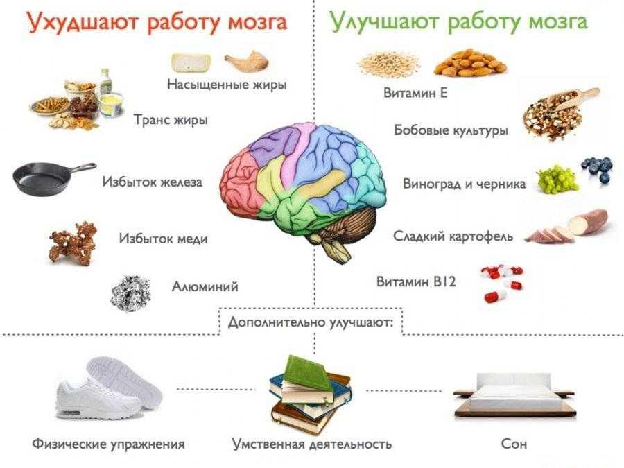 Это подборка полезных продуктов для памяти и активизации работы мозга, которые можно включить в рацион на правильном питании Как улучшить память и что есть