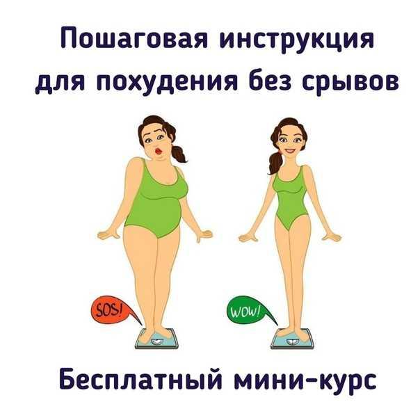 Главные правила похудения и сброса веса в домашних условиях |