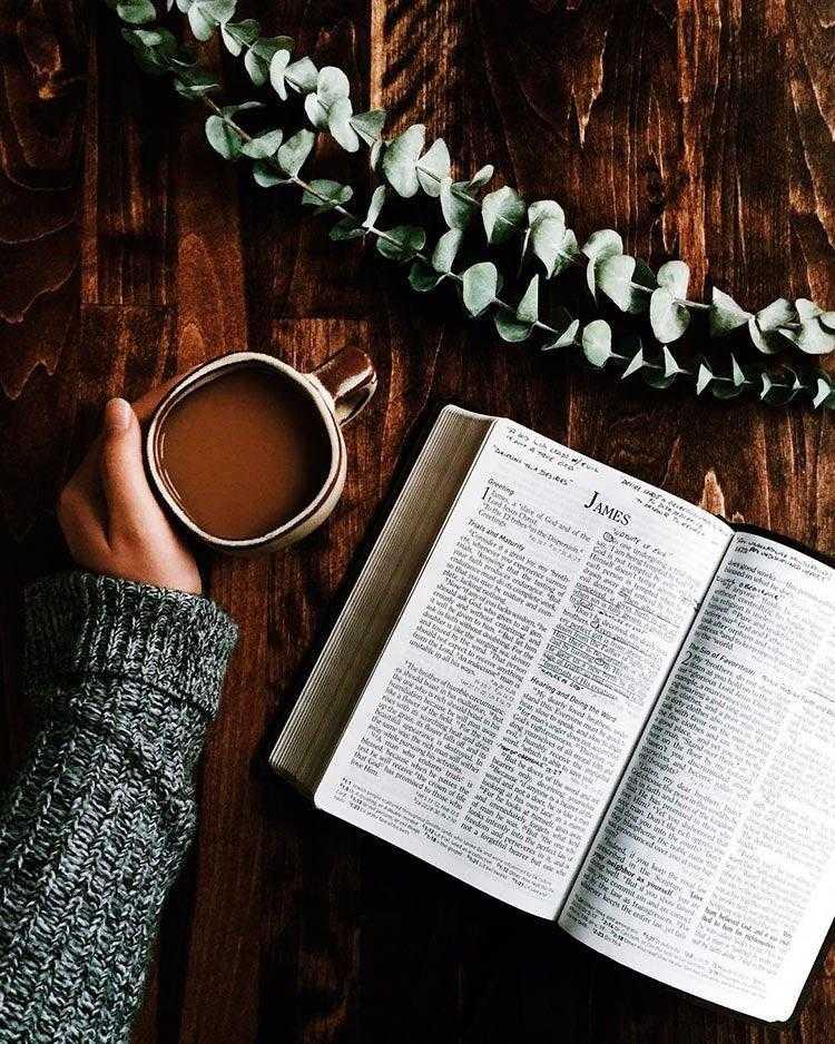 Польза чтения - зачем нужно читать книги