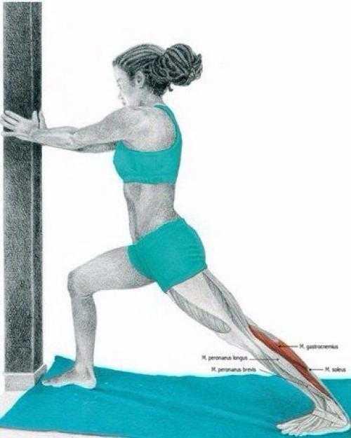 Разминка перед тренировкой: 30 лучших упражнений (фото)