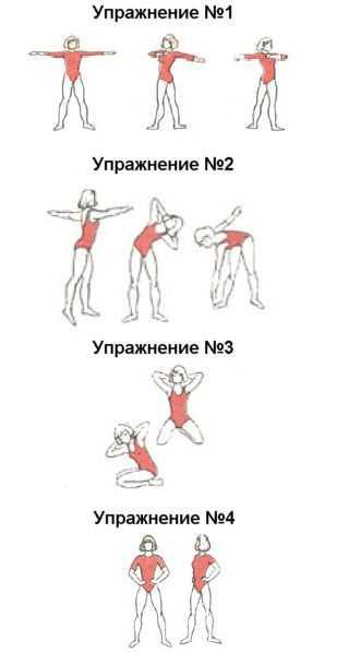 Тренируем косые мышцы: упражнения для боков и талии