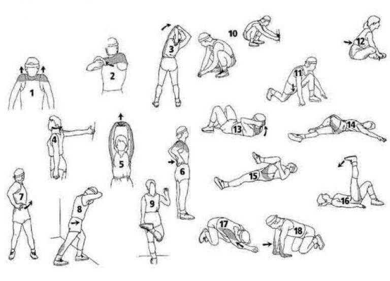Растяжка после тренировки минимизирует риск травм и расслабляет мышцы после нагрузки Топ лучших видео для растяжки после тренировки от канала FitnessBlender
