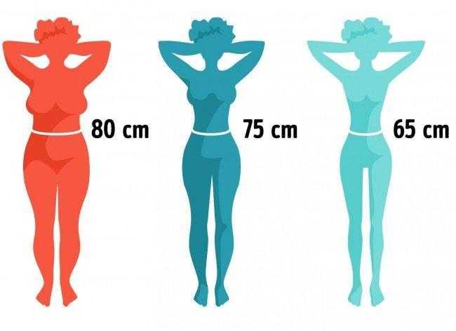 Идеальная фигура: как добиться желанных параметров тела, правильное питание, упражнения для талии и всего тела