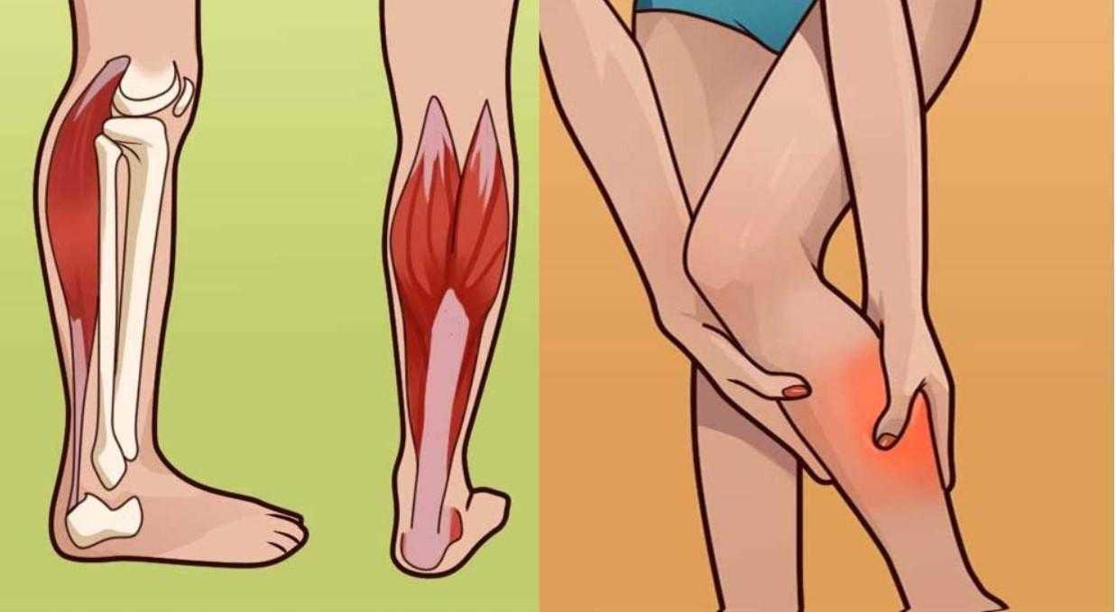 Судороги икроножных мышц ночью у взрослых и детей: причины возникновения и способы лечения
