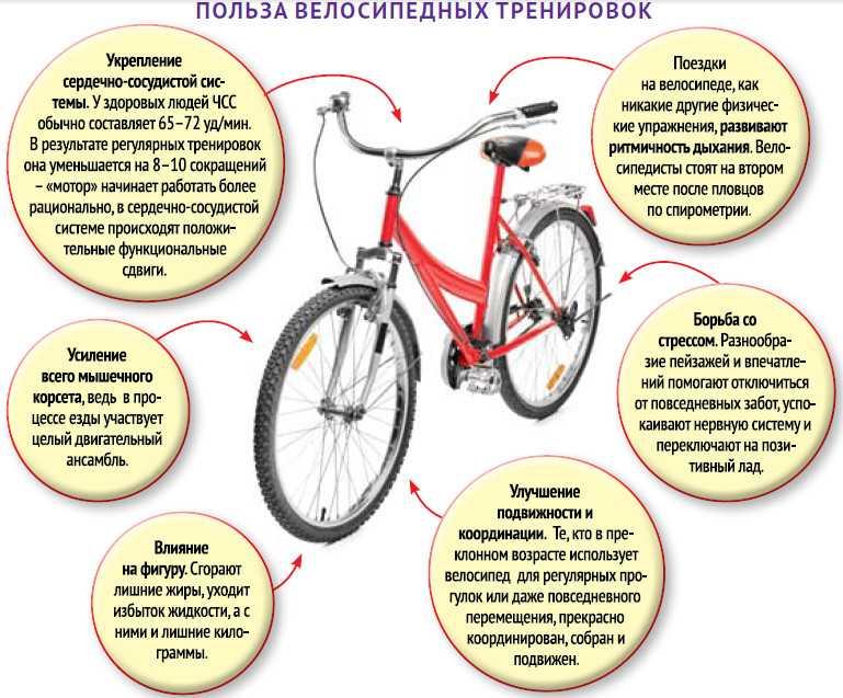 Езда на велосипеде для похудения, как правильно выбрать велосипед, польза велосипедных прогулок