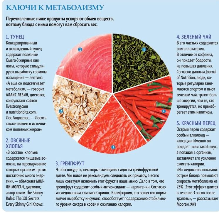 Можно ли ускорить обмен веществ (метаболизм) и как это сделать – зожник     можно ли ускорить обмен веществ (метаболизм) и как это сделать – зожник