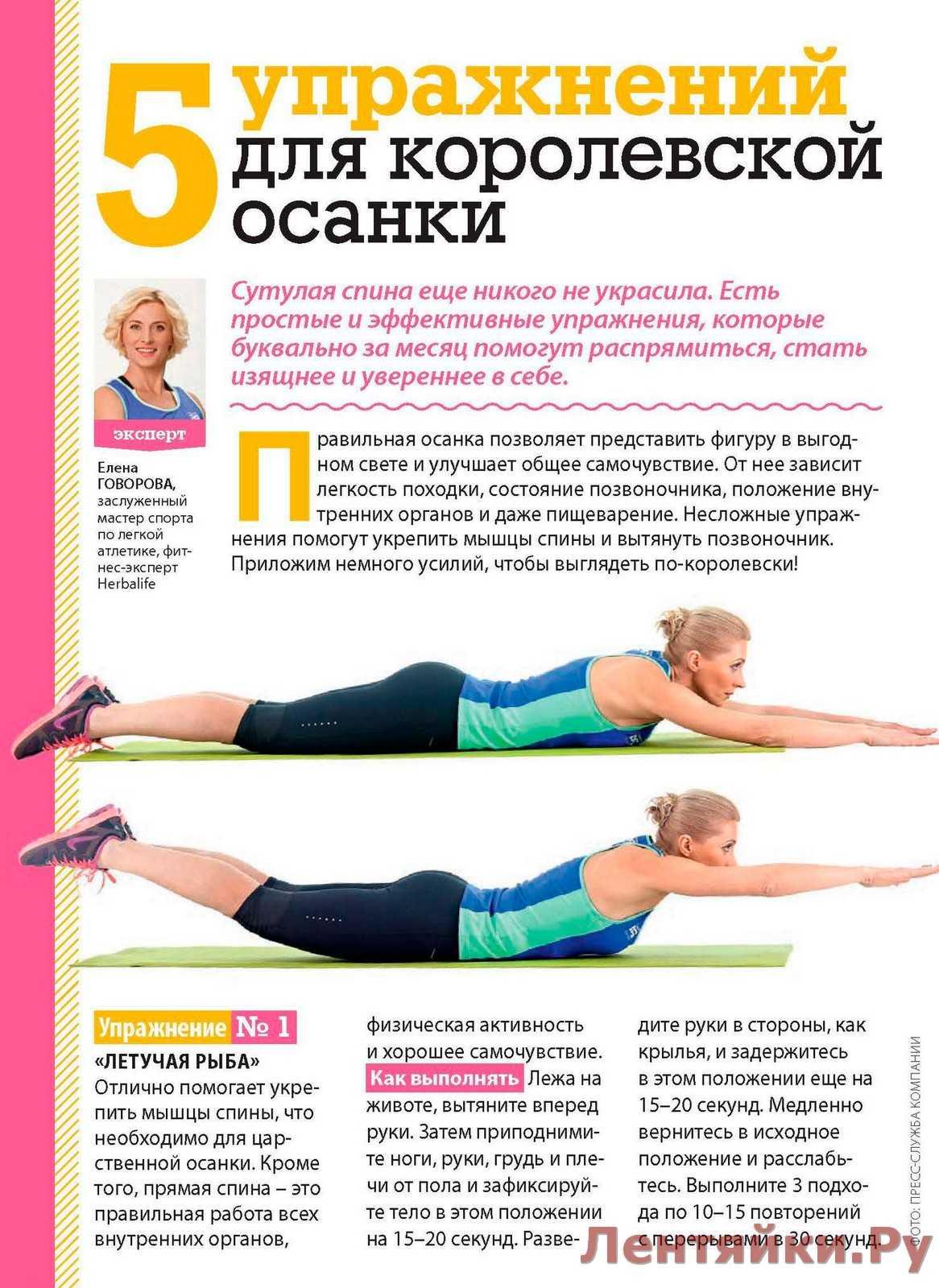 Эффективные упражнения на спину для улучшения осанки в домашних условиях