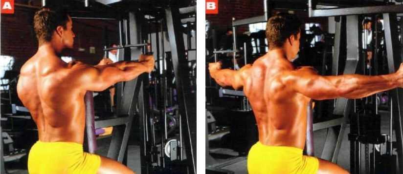 Создаём идеальные плечи самые эффективные упражнения на дельты