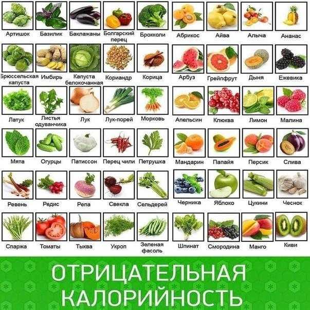 Продукты с отрицательной калорийностью в таблице