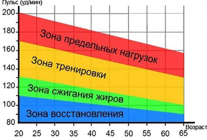 Показатели чсс и пульса: в чем разница