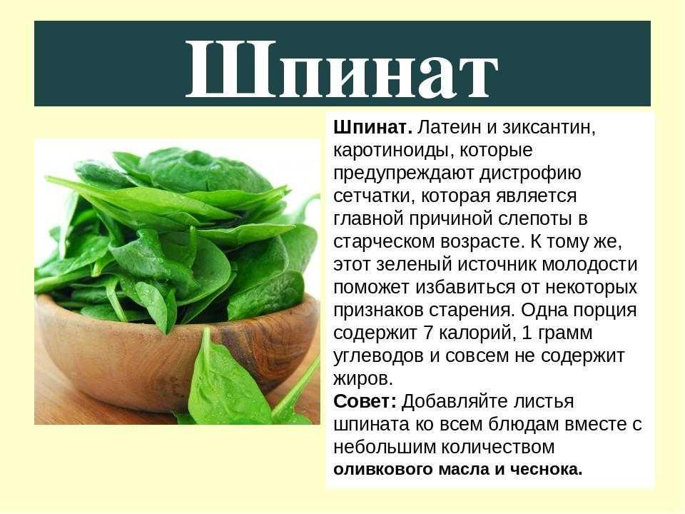 Как употреблять шпинат в пищу, на какие продукты этот овощ похож по вкусу, что с ним делать, куда добавлять и как правильно есть, как выглядит такая зелень на фото?