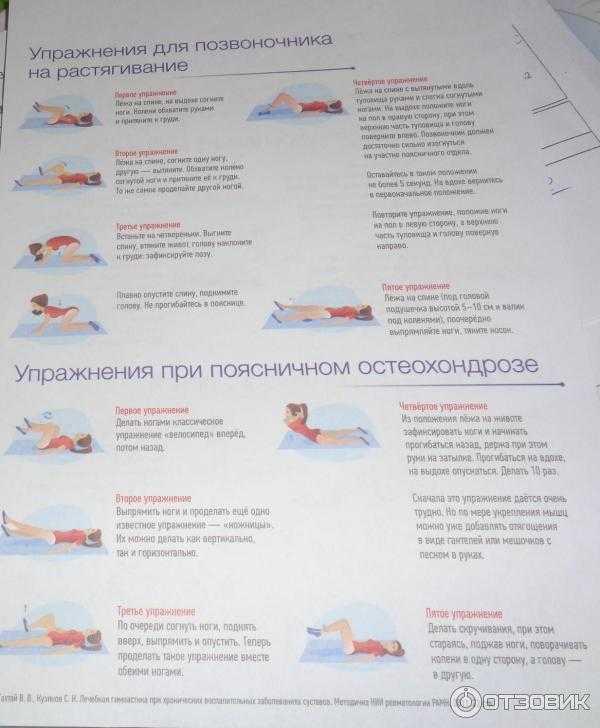 Наиболее эффективные упражнения для спины при грыже поясничного и шейного отдела позвоночника