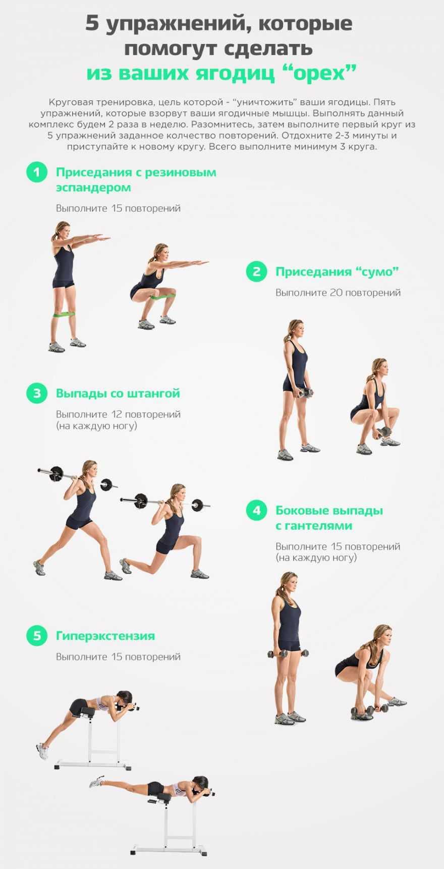 Подборка из 10 упражнений на ягодицы для начинающих с гифками, которые сделают ягодицы круглыми, фигуру спортивной и подтянутой, а мышцы упругими