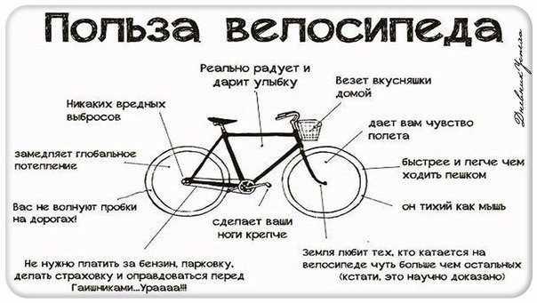 Как похудеть на велосипеде — правила, польза, опасность