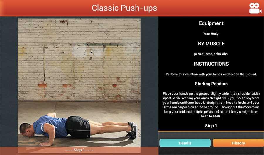 Фулбади тренировка: комплексы упражнений на все группы мышц 3 и 4 раза в неделю
