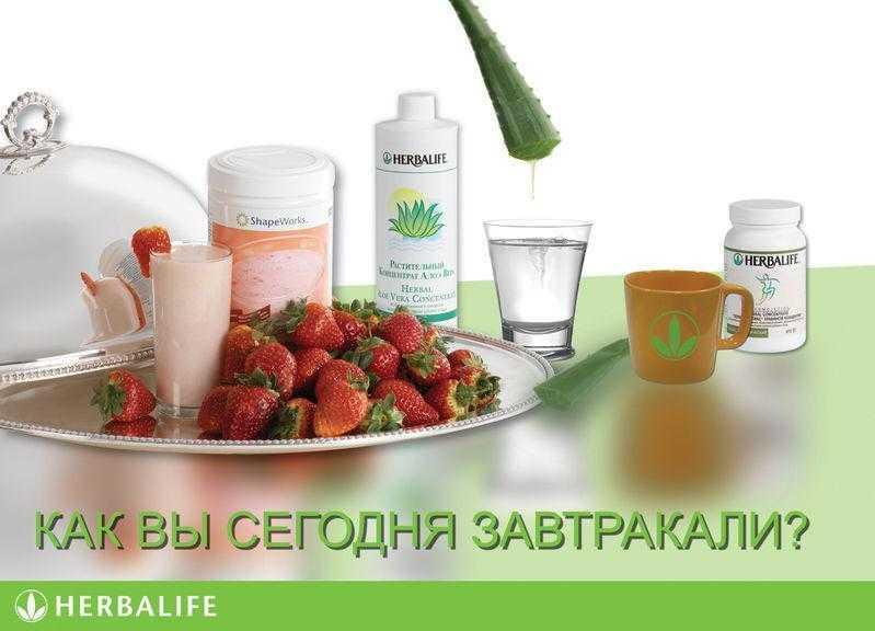Протеиновые коктейли для похудения «гербалайф»: вся правда о продукте