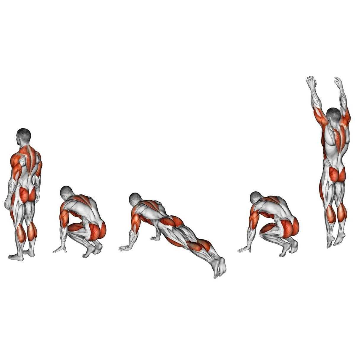Круговая тренировка: принцип построение и примеры тренировок