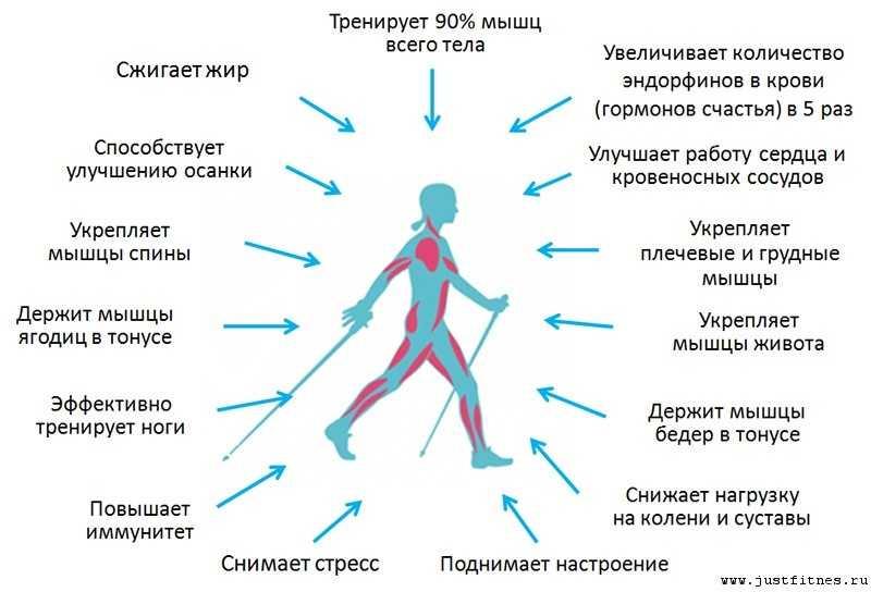 Бег дома на месте для похудения и укрепления мышц