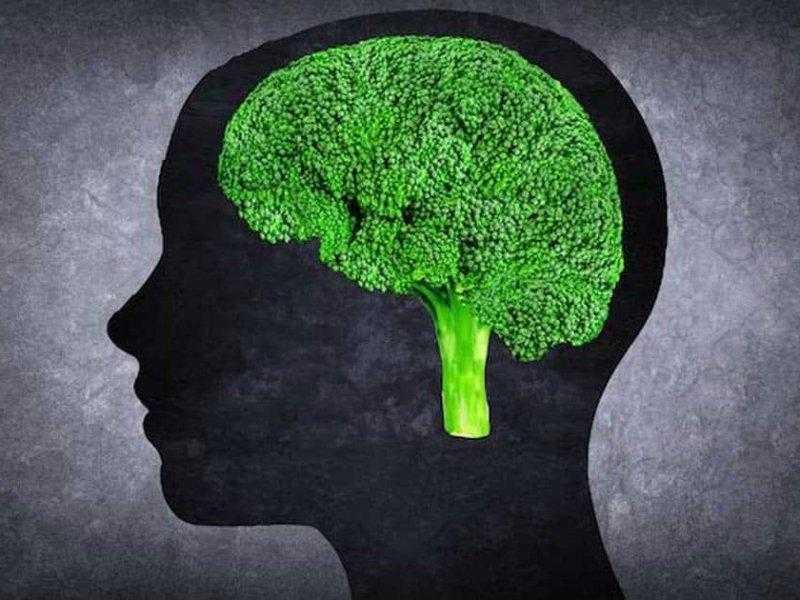 Как улучшить свои умственные способности - лайфхакер