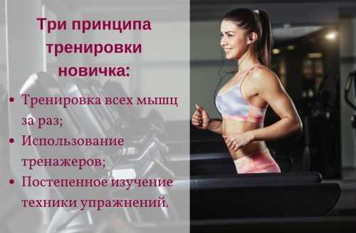 Гид по развитию мышц кора: анатомия, тесты и программа тренировок