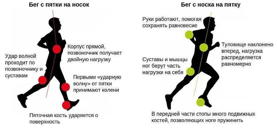Как правильно бегать начинающим. мотивация, советы и программа бега для новичков