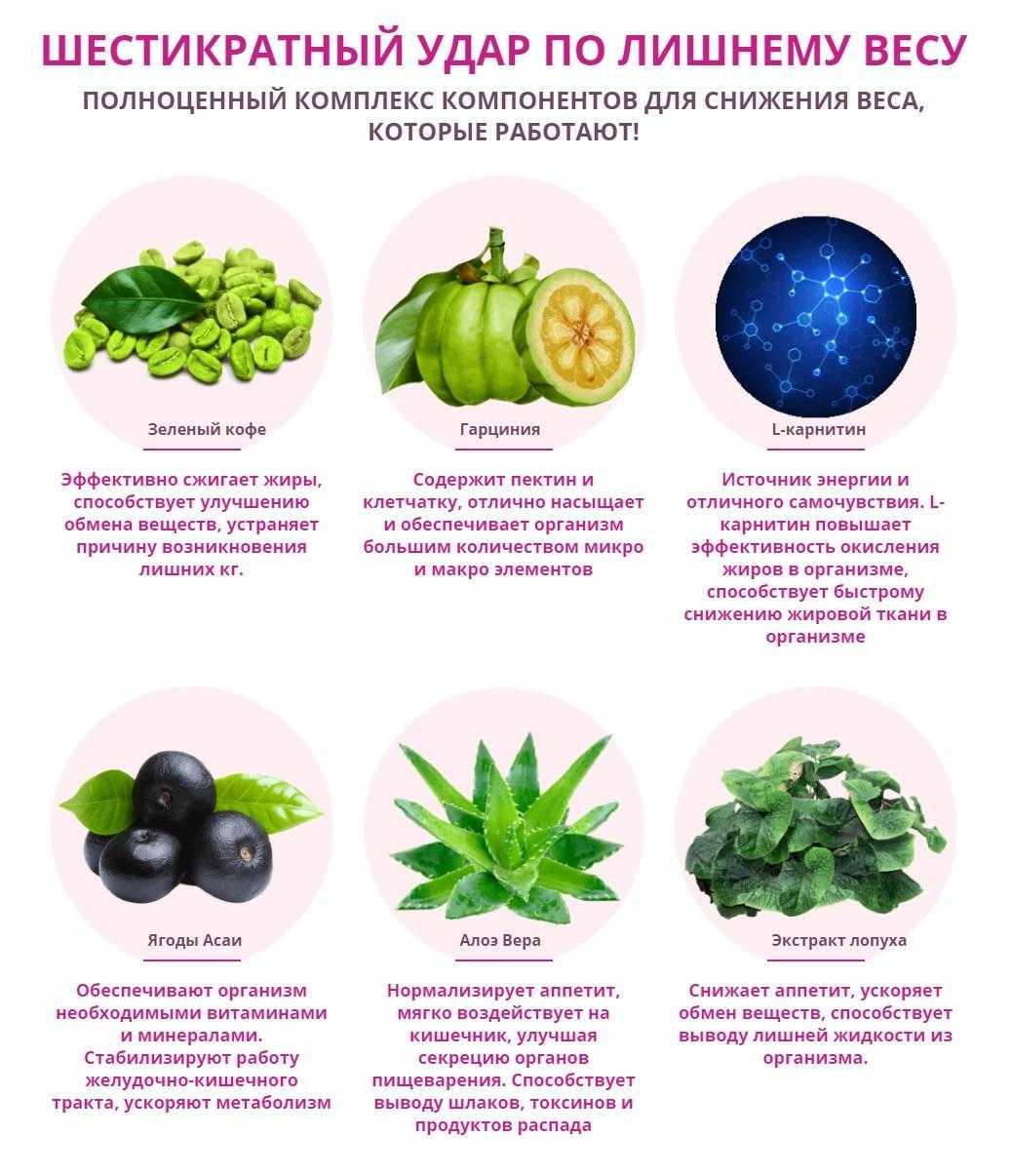 Можно ли ускорить обмен веществ (метаболизм) и как это сделать