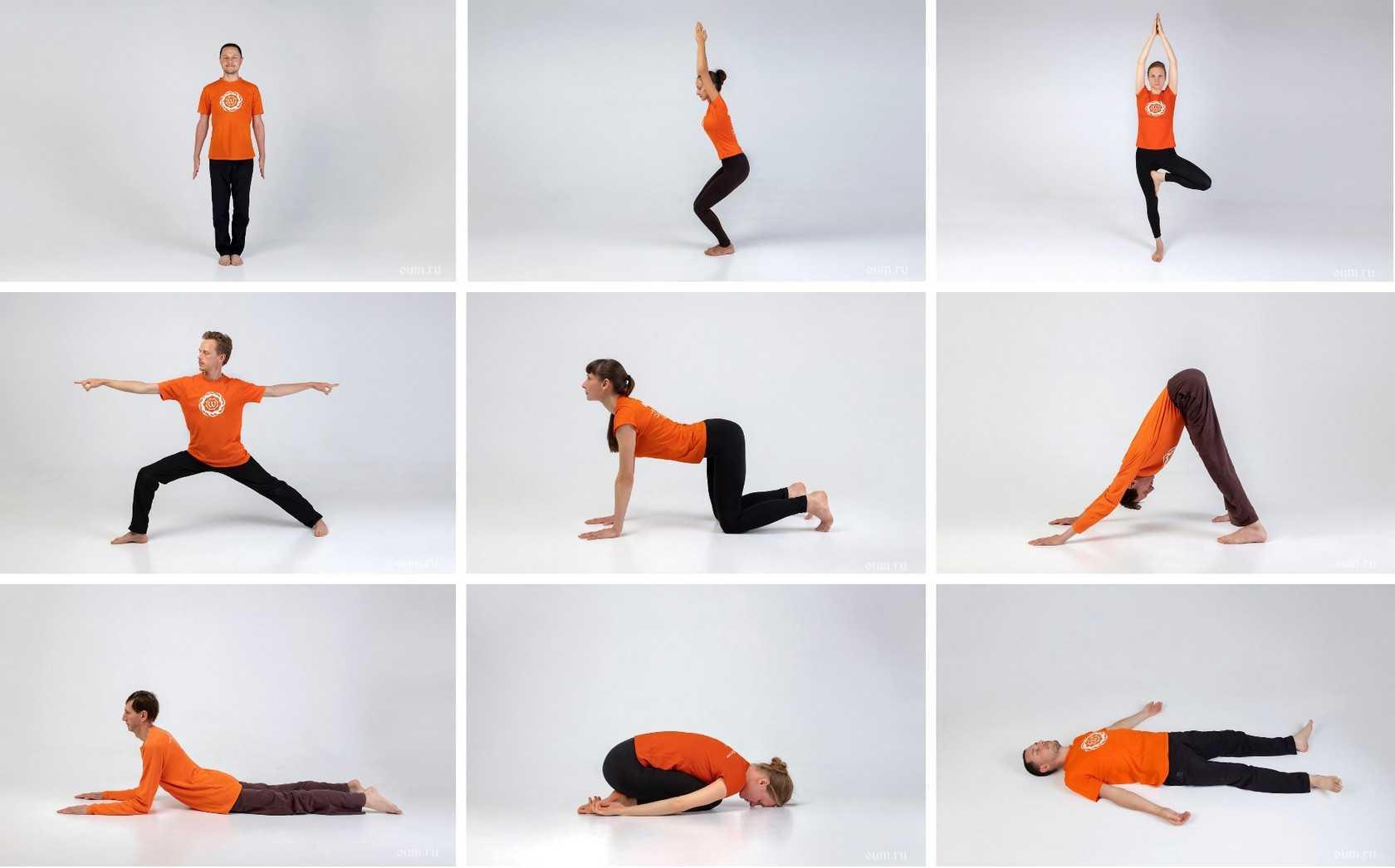 Йога для начинающих в домашних условиях: упражнения, позы, уроки для начинающих