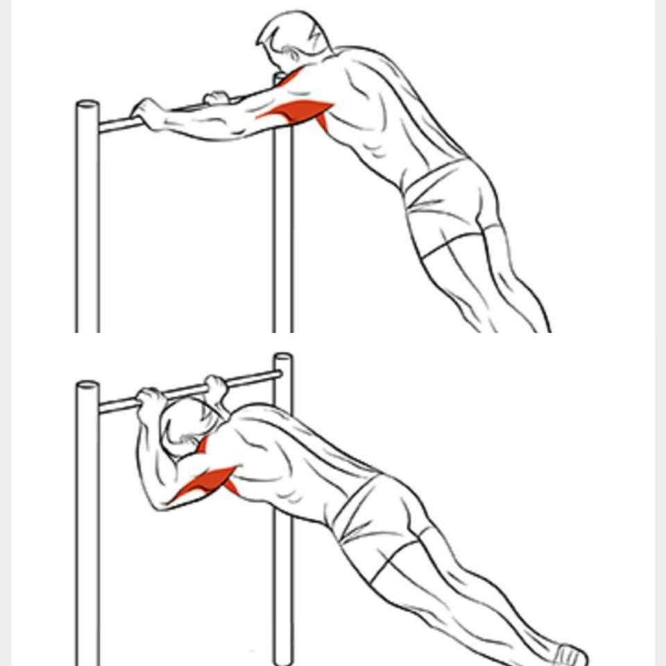 Комплекс лучших базовых и изолирующих упражнений на трицепсы