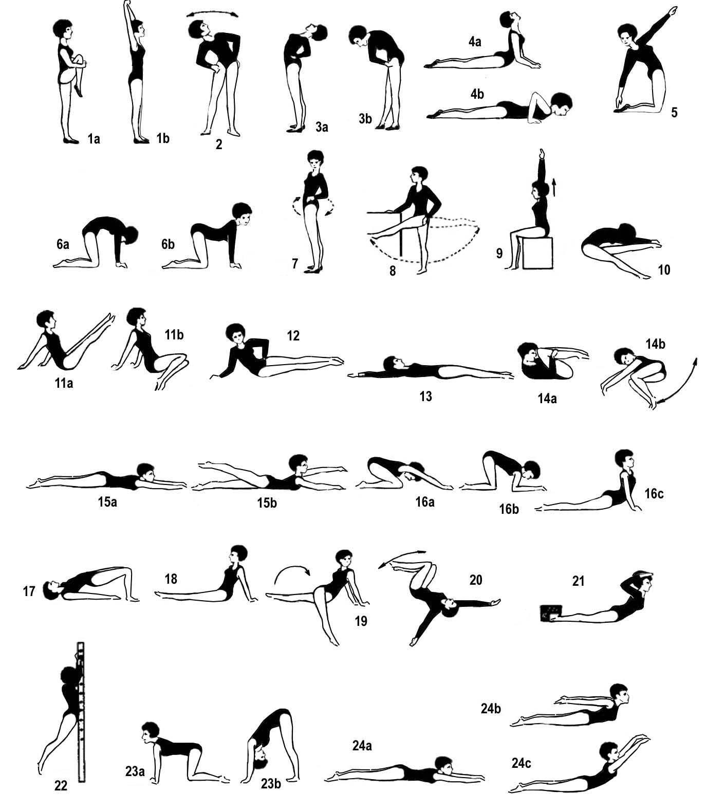 Лечебная гимнастика при остеохондрозе - оздоровительные комплексы упражнений