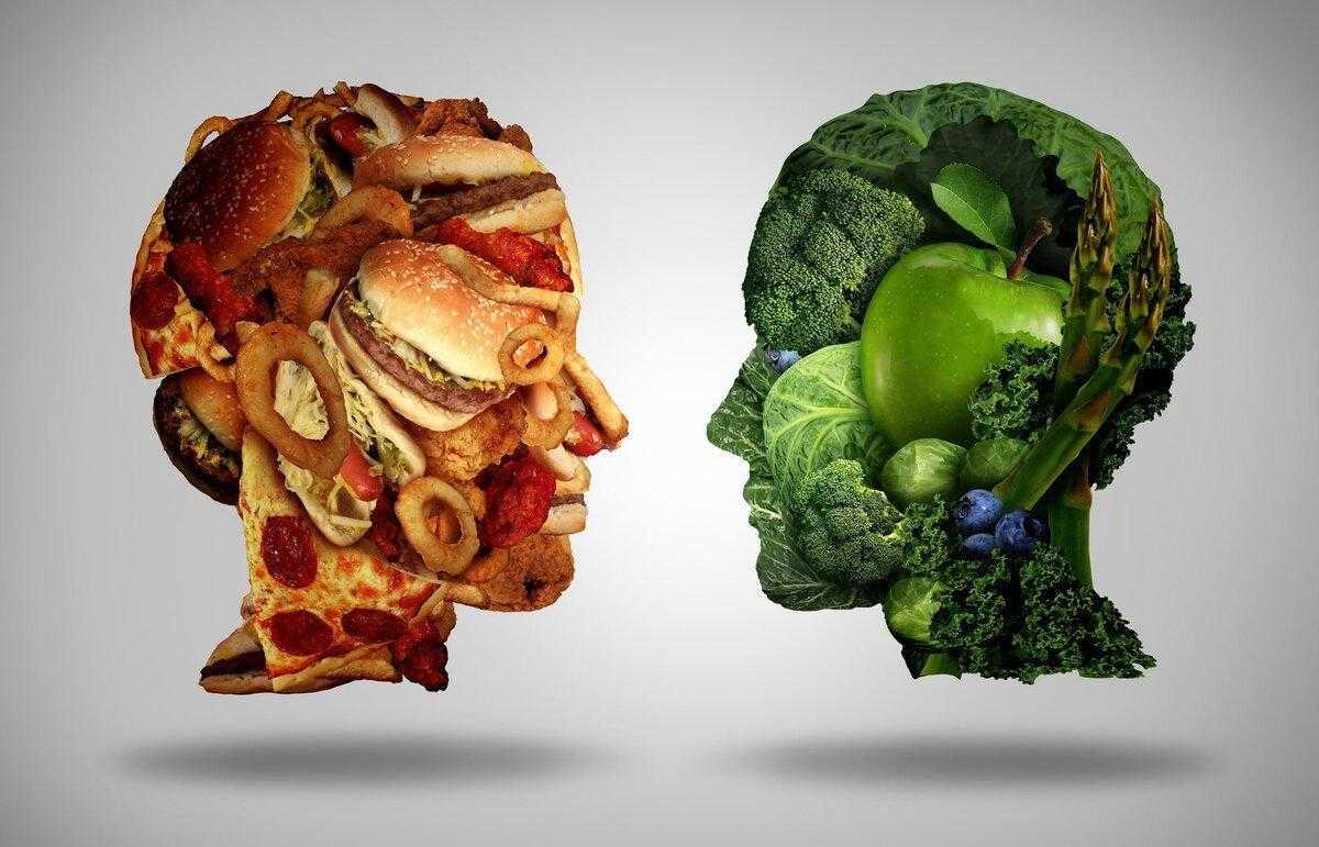 Подробнее о том, как  жиры влияют на умственные способности