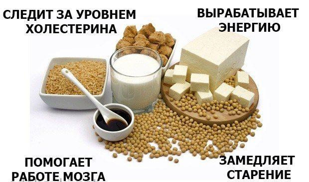 Как принимать соевый протеин: для массы и при похудении