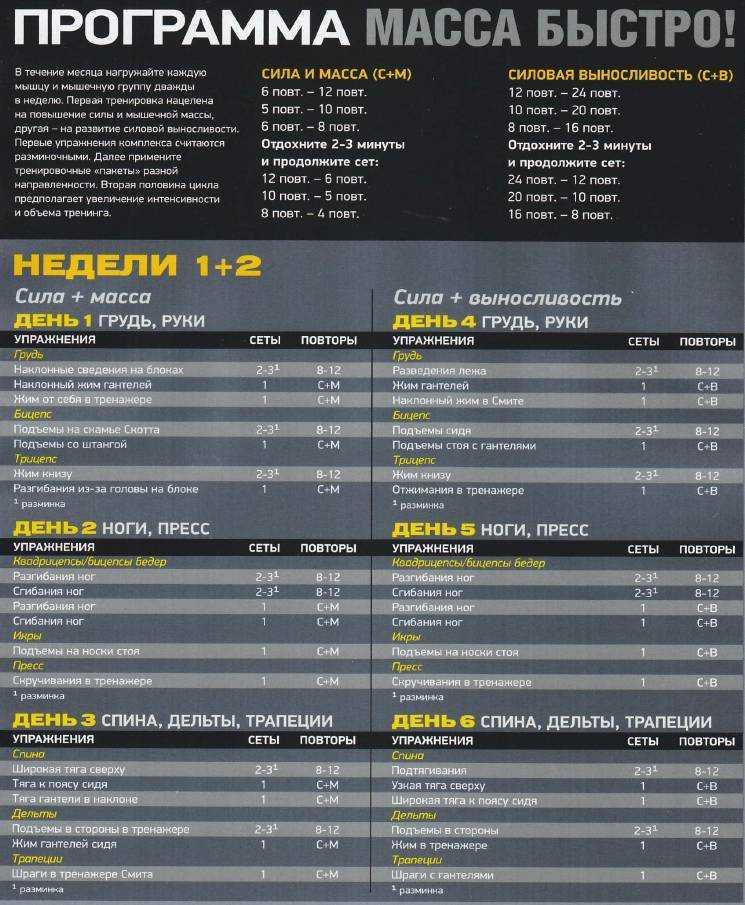 P90x — измени свое тело за 90 дней | minus100kg.ru