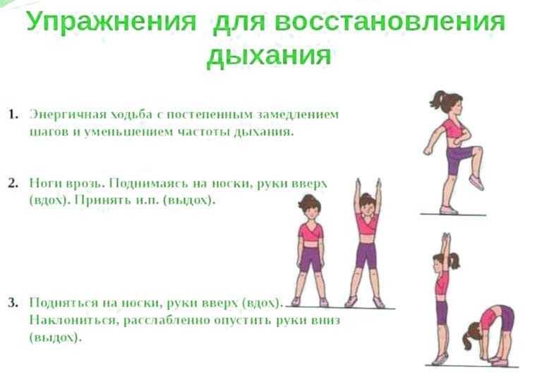Польза утренней зарядки, комплекс упражнений для мужчин, женщин и детей