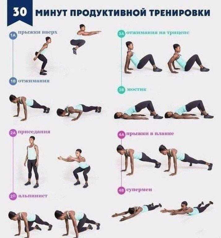Круговая тренировка в тренажерном зале для девушек на похудение