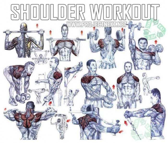 Как накачать трицепс базовые упражнения на трицепс - muscleoriginal