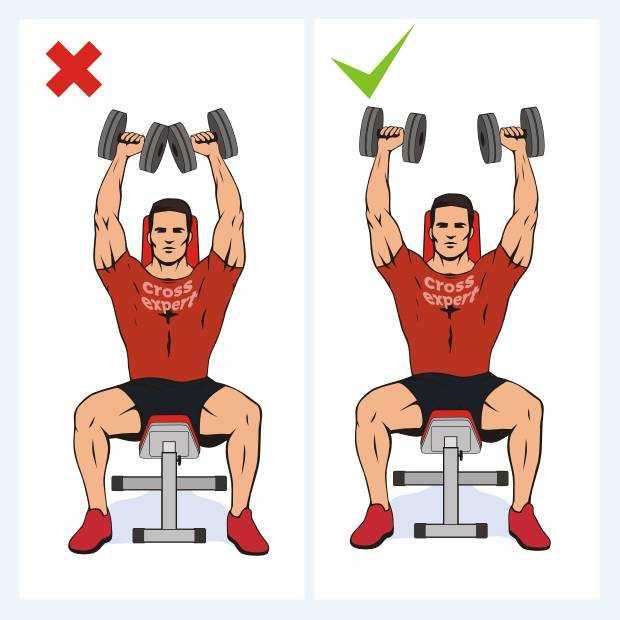 Вращательная манжета плеча: боль, упражнения, лечение