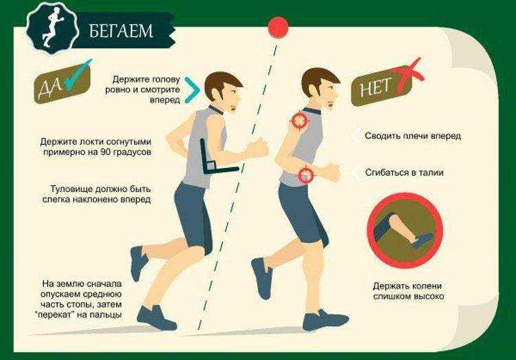 Зожник |   полный гид: как правильно бегать
