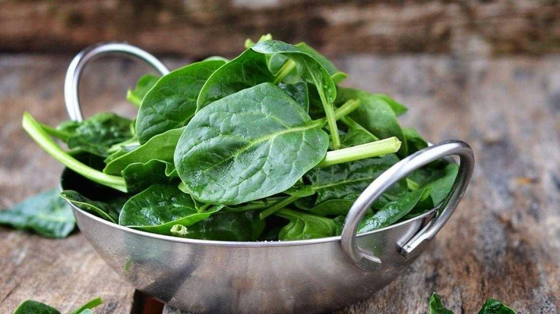 Шпинат: польза и вред для здоровья | пища это лекарство