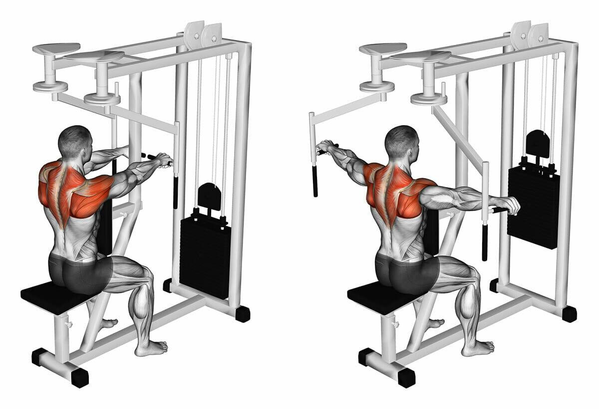 Сведение рук в тренажере — sportfito — сайт о спорте и здоровом образе жизни