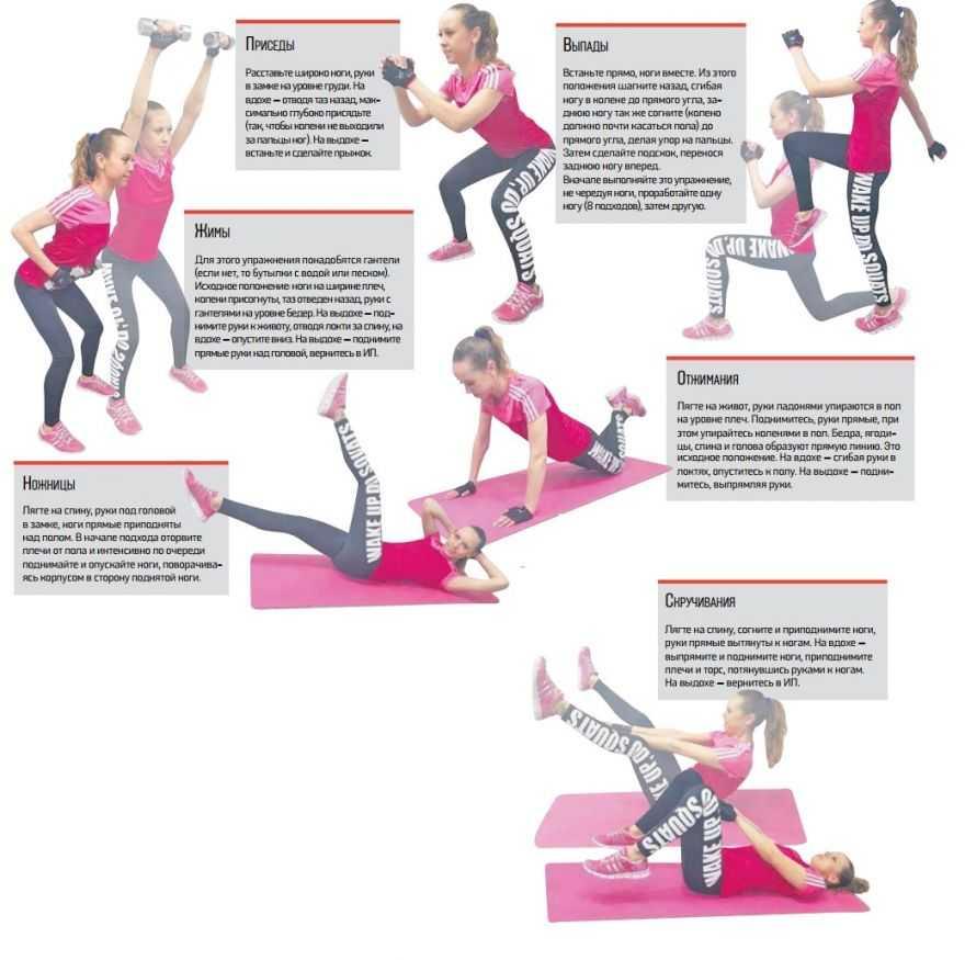 Тренировка дома: примеры тренировок+список упражнений