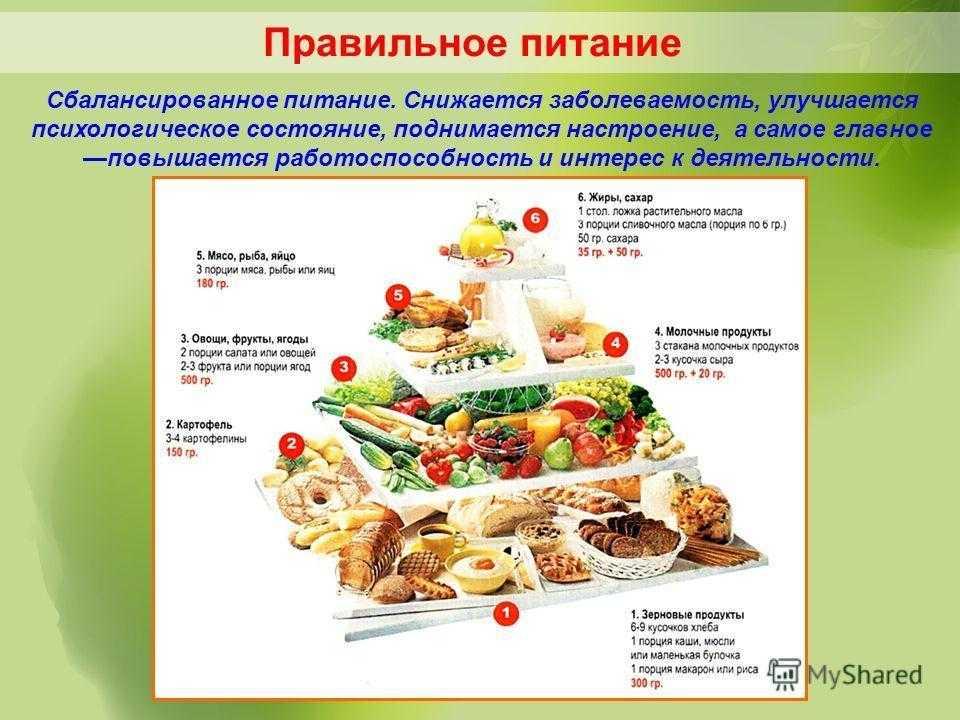 О сбалансированном питании: основные принципы, формула расчета на каждую неделю