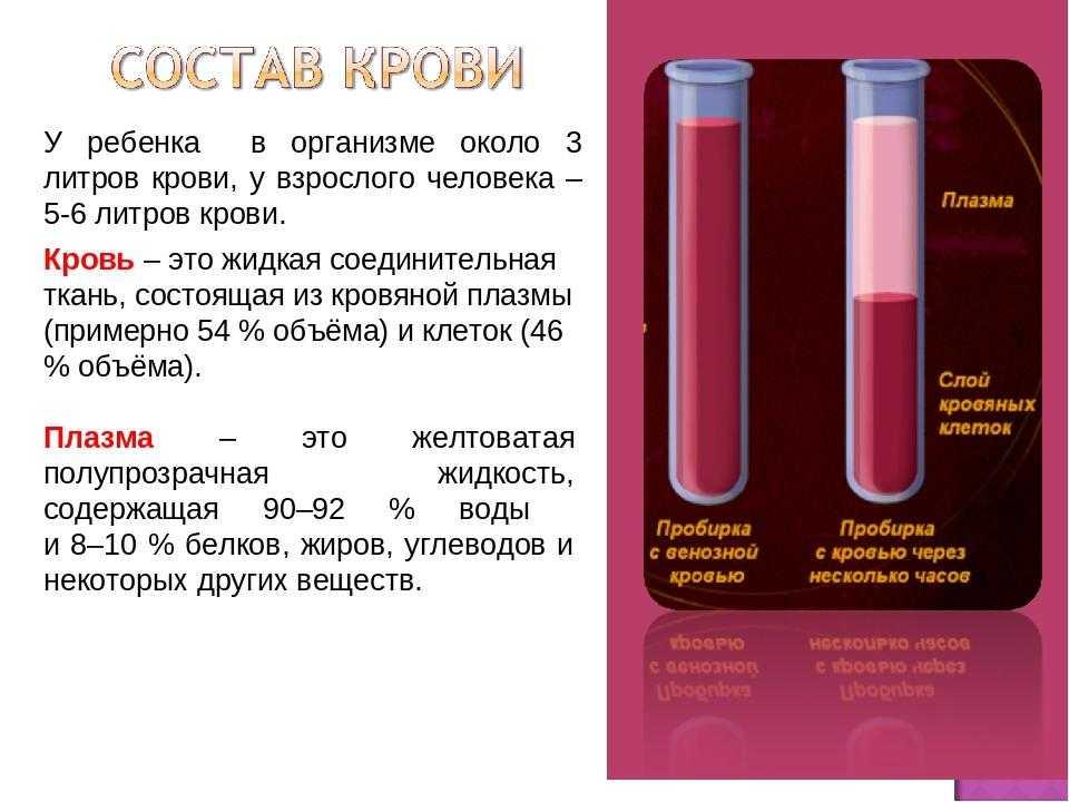 Самые полезные и вредные продукты для почек человека