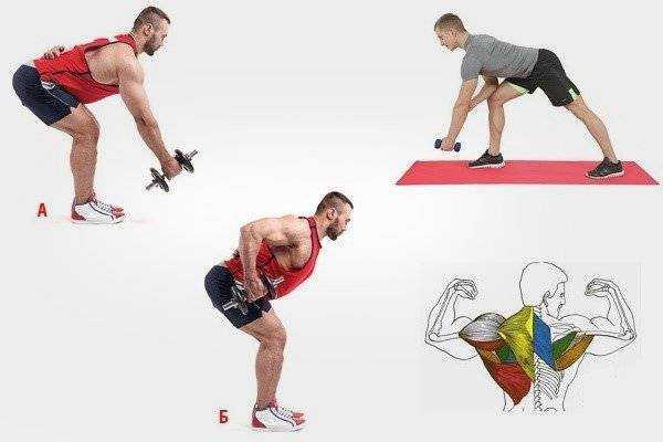 Упражнения для силы рук — sportfito — сайт о спорте и здоровом образе жизни