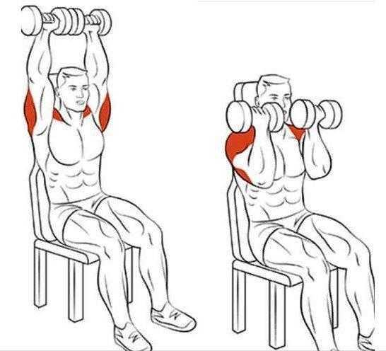 Базовые упражнения для трицепса техника выполнения упражнений, схемы, практические рекомендации и правила выполнения упражнений на трицепс