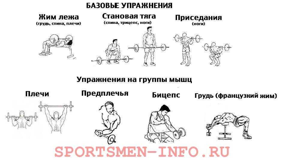 Тренировки на петельных тренажёрах: сильные мышцы кора и здоровая спина - лайфхакер