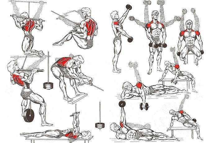 16 простых упражнений на растяжку напряженных плеч