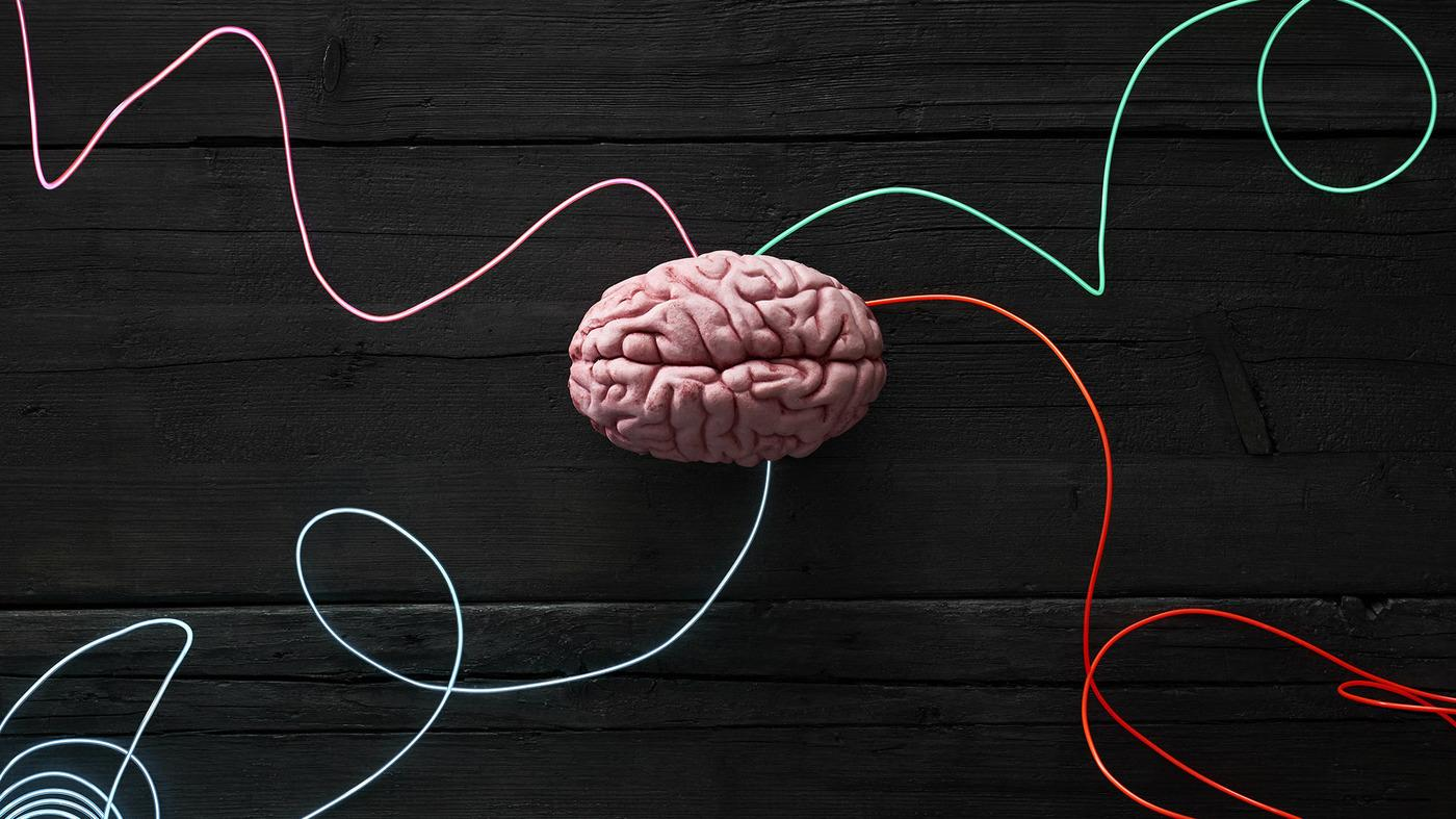Как улучшить мозговую деятельность: влияние спорта на мозг | салид