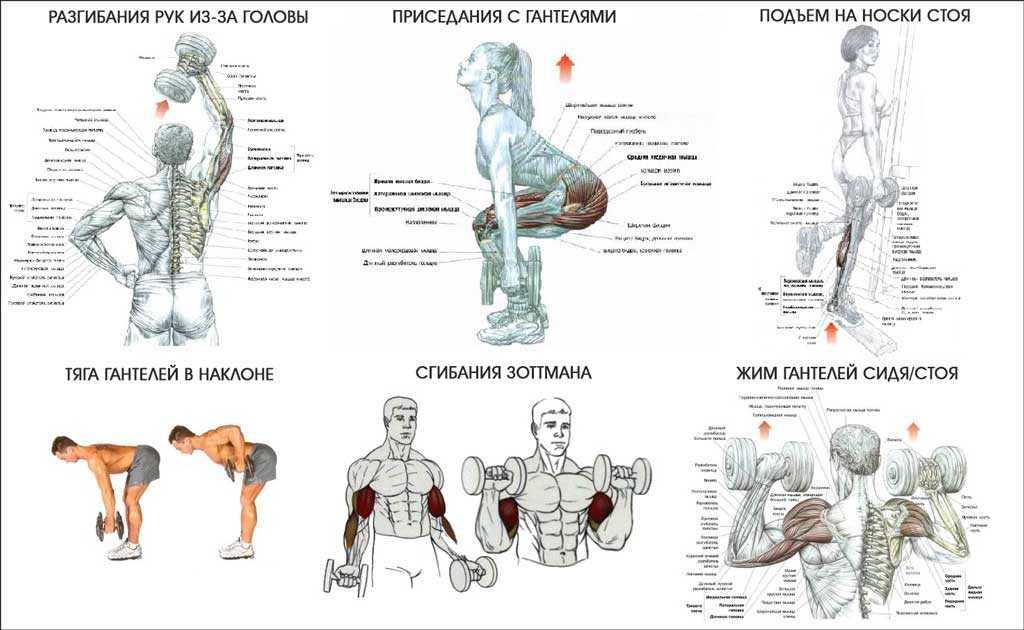 Стретчинг: упражнения с полотенцем для растяжки мышц рук, плечевого