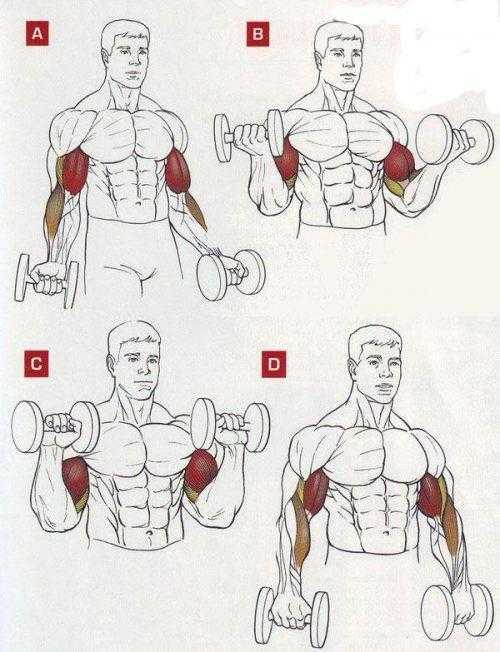 Развитие гибкости. фитнес для танцоров