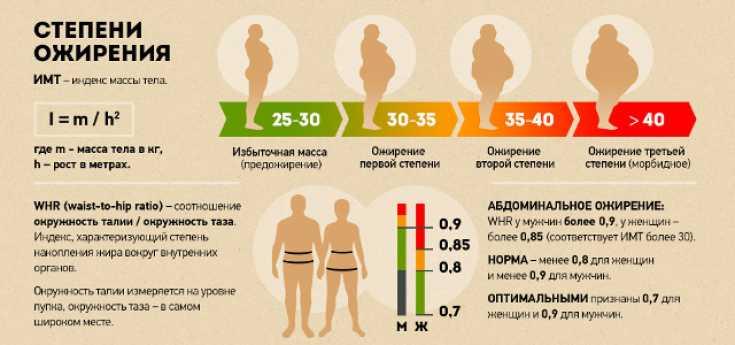 Лишний вес: как быстро сбросить в домашних условиях, советы для женщин и мужчин